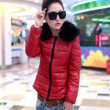 冬季新款时尚韩版修身短款女装羽绒服  保暖外套  风衣  包邮